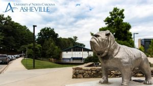 Zoom background Rocky the Bulldog statue at UNC Asheville